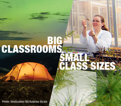Big Classrooms - Small Class Sizes